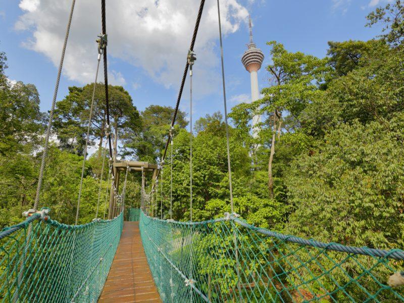 https://aceshotels.com/wp-content/uploads/2020/03/KL-Forest-Eco-Park-800x600.jpg